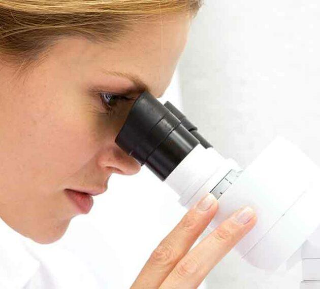 diplôme assistant ingénieur biologie biochimie biotechnologie à lyon