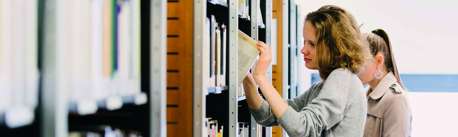header bibliothèque estbb